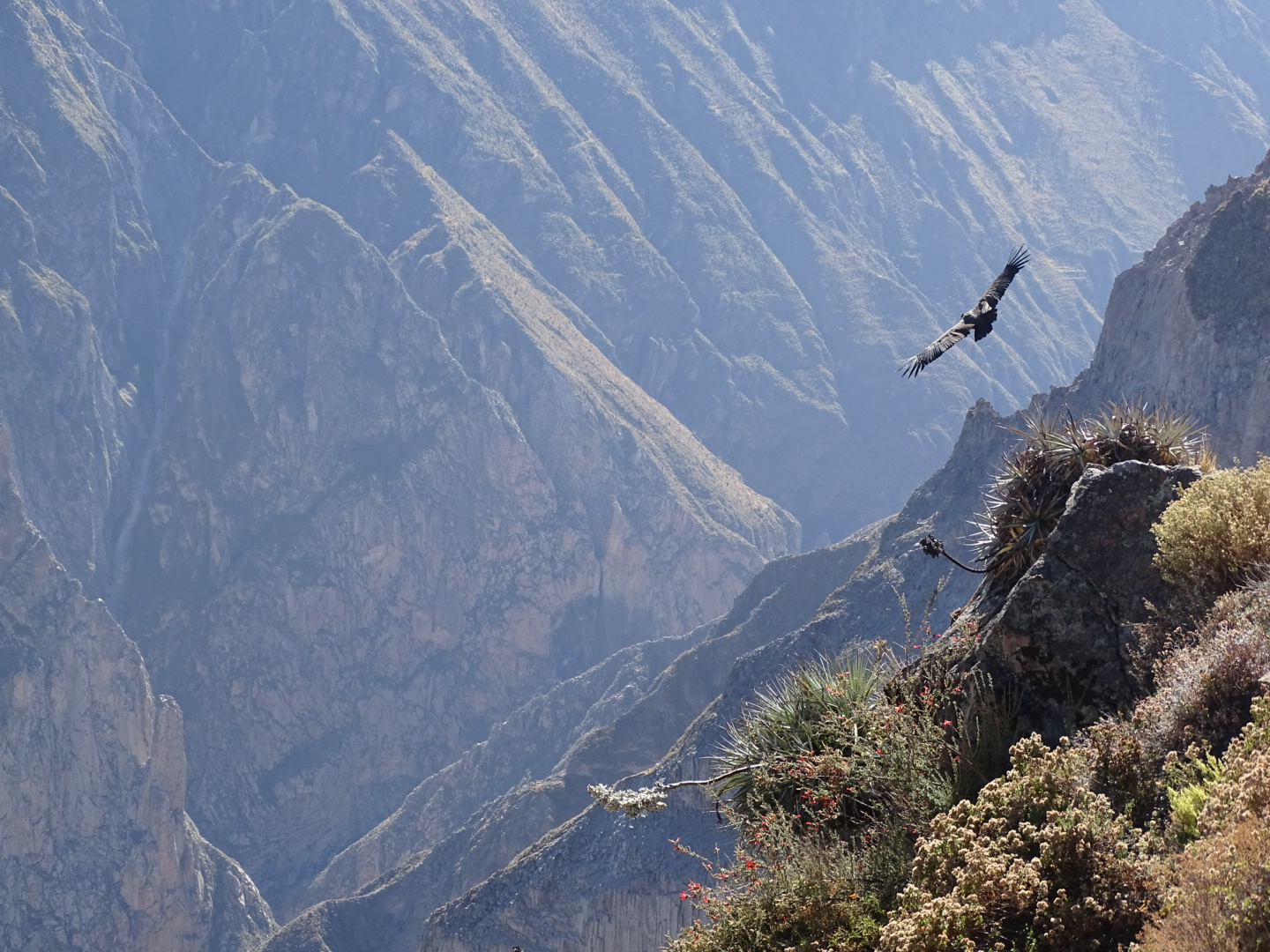 Colca Adventure Culture 2 Days