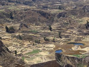 colca trek 2 days