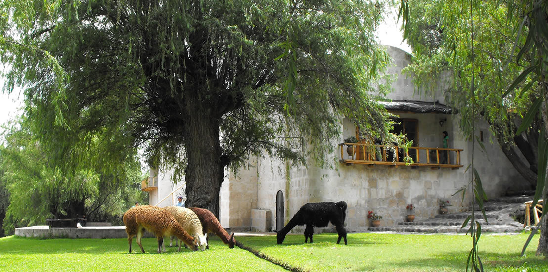 countryside arequipa tour