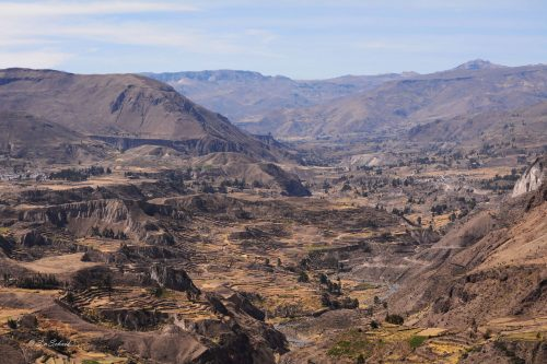 Colca canyon 4 day trek